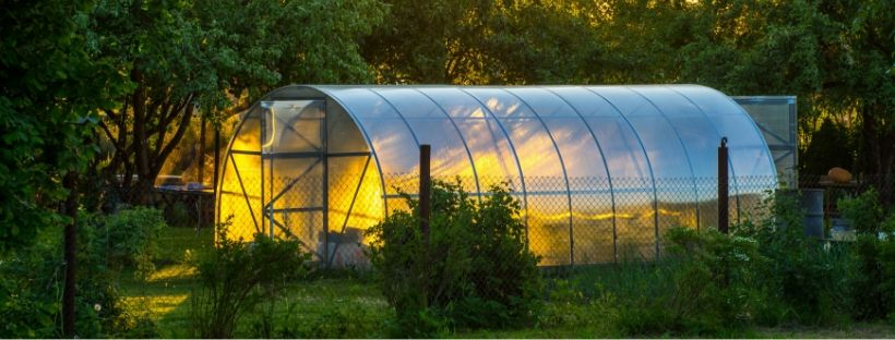 6 Steps to Build Garden Greenhouse On A Budget